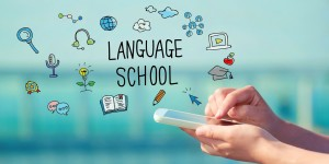 IULE- Institute of Universal Languages & Education